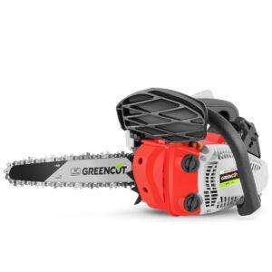 GREENCUT GS250X CARVIN